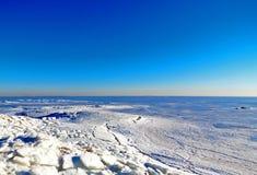 En wild and på en is vid det öppet bevattnar av floden i wintertime fotografering för bildbyråer