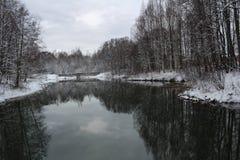 En winterday Nice Arkivfoton
