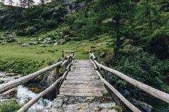 En wood bro i berg royaltyfri bild
