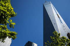 En World Trade CenterkonstruktionsNew York City USA horisont stora Apple 4 Royaltyfri Fotografi