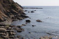 En yegua del al del riva Imagen de archivo libre de regalías