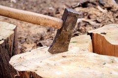 En yxa på ett trä, trädjournal En yxa klibbade i en inloggningsframdel av en hög av trä, ordnar till för att hugga av och övervin royaltyfri bild