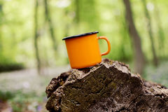 Enamel cup of tea. Cup with hot tea stands on a log Royalty Free Stock Photos
