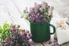 Enameled mug of thyme flowers. Herbal medicine. Stock Photos