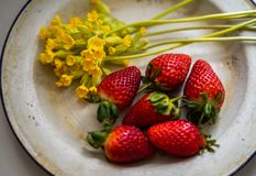 Enameled vintage plate with ripe strawberries and yellow flowers royalty free stock image