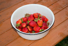 Enamelled bowl with fresh strawberries. Standing on the rustic wooden table Royalty Free Stock Images