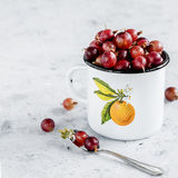 Enamelled mug with berry. Enamelled mug with fresh gooseberry Stock Image