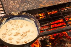 Enamelled pan on fire. Preparation of mushroom steak sauce. Fire in the camp. Enamelled pan on fire. Preparation of mushroom steak sauce. Fire in the camp Royalty Free Stock Photos