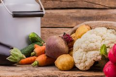 EnamelwareMilchkanne und Gemüse schließt oben lizenzfreies stockfoto