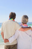 Enamored couple looking at the sea Royalty Free Stock Photo