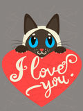 Enamored Siamese Cat With Heart And Text I Love You. Hand drawn Inspirational And Encouraging Quote. Stock Image