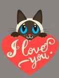 Enamored Syjamski kot Z sercem I tekst Kocham Ciebie Ręka rysująca inspiracyjna i zachęcająca wycena Obraz Stock