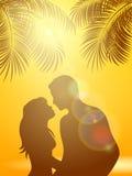 Enamored under palm trees on an orange Sunny background Stock Photos