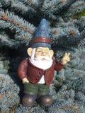 Enano delante de un árbol conífero Imagen de archivo libre de regalías