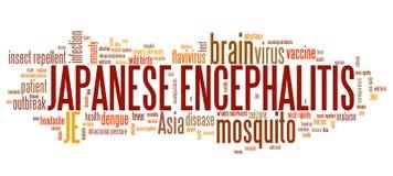 Encéphalite japonaise illustration stock. Illustration du médecine ...