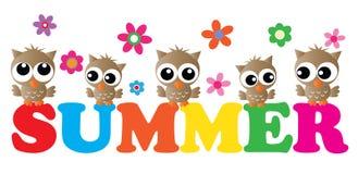 Encabeçamento do verão com corujas bonitos Fotografia de Stock Royalty Free