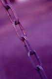 Encadenamiento púrpura Fotografía de archivo libre de regalías