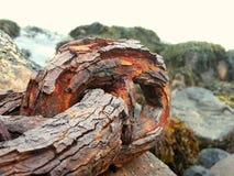 Encadenamientos oxidados fotografía de archivo