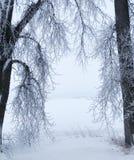 Encadrement d'hiver images stock