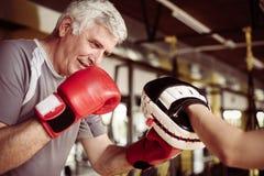 Encaixotamento do homem mais idoso no gym Homem superior com instrutor pessoal fotos de stock royalty free