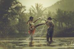 Encaixotamento tailandês Imagens de Stock
