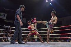 Encaixotamento tailandês Imagem de Stock Royalty Free