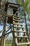 Encajone el soporte en el borde de un bosque Imagen de archivo libre de regalías