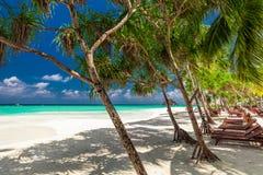 Encalhe camas na máscara das palmeiras na praia tropical em Maldi Imagem de Stock Royalty Free
