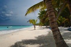Encalhe camas sob a palma de coco com uma vista para o mar Fotografia de Stock