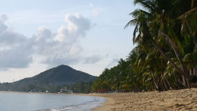 Encalhe com as palmas amarelas da areia e de coco, Tailândia filme