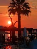 Encalhe com a palmeira no fundo vermelho do sol de ajuste Fotos de Stock Royalty Free