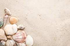 Encalhe com seashell e areia fotos de stock royalty free
