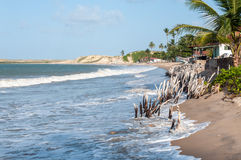 Encalhe na maré alta, Pititinga, natal (Brasil) Foto de Stock Royalty Free