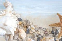 Encalhe o conceito do feriado com a vários conchas do mar, estrela do mar e pebbl Fotografia de Stock