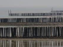 Encalhe polos na praia de Breskens Zeeuws-Vlaanderen, Zeeland, os Países Baixos, Europa Fotografia de Stock
