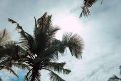 Encalhe Takamaka, ascendente próximo da ilha de Mahe, Seychelles fotos de stock royalty free