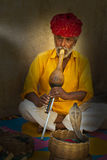 Encantador de serpente, pessoa da Índia, curso Fotografia de Stock