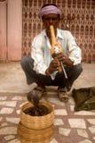 Encantador de serpiente, Jaipur, la India Imagen de archivo