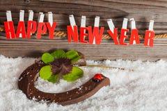 Encanto afortunado por Año Nuevo Imágenes de archivo libres de regalías