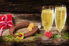 Encantos afortunados, champán, Año Nuevo Fotos de archivo
