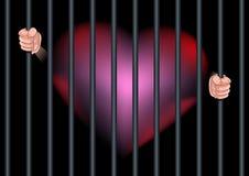 Encarcele la sensación del corazón en amor. Imagen de archivo libre de regalías