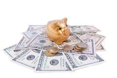 Encargado asiático del dinero del cerdo Imagenes de archivo