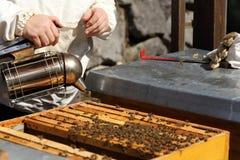 Encargado de la abeja con el fumador Imágenes de archivo libres de regalías
