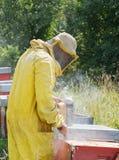 Encargado de la abeja con humo por las colmenas Producción de la miel Fotos de archivo libres de regalías