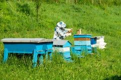 Encargado de la abeja con las colmenas azules Fotografía de archivo libre de regalías