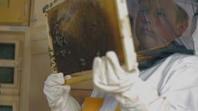 Encargado de la abeja del niño que aprende cómo comprobar las abejas almacen de video