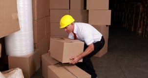 Encargado de Warehouse que hiere sus cajas móviles traseras almacen de metraje de vídeo