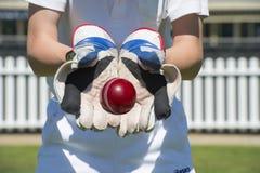 Encargado del wicket del grillo Fotos de archivo