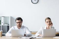 encargados jovenes concentrados que trabajan con los ordenadores portátiles junto imágenes de archivo libres de regalías
