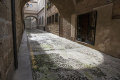 Encarnacion gata på den medeltida gamla staden av Plasencia, Caceres, S Royaltyfria Foton